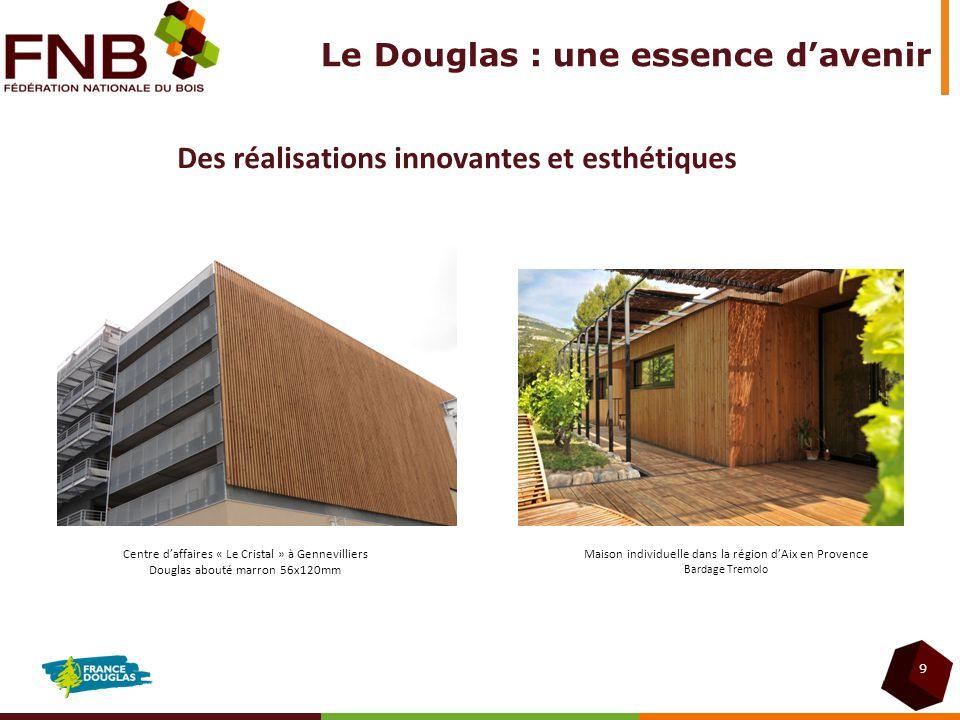 Le Douglas : une essence d'avenir
