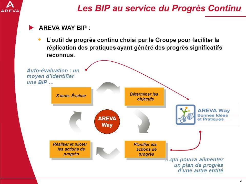 Les BIP au service du Progrès Continu