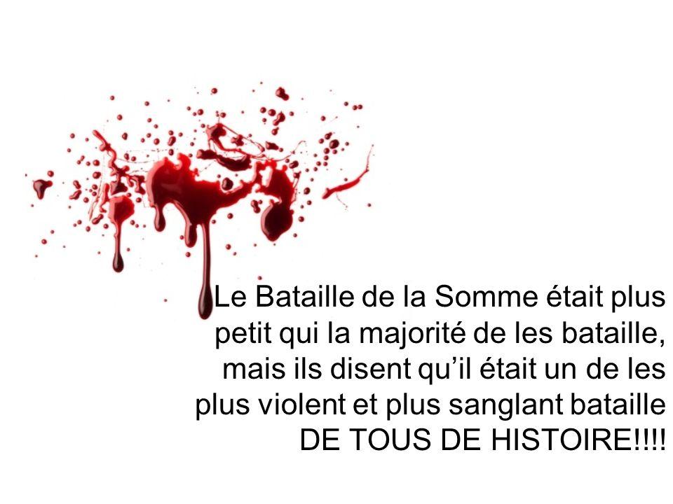 Le Bataille de la Somme était plus petit qui la majorité de les bataille, mais ils disent qu'il était un de les plus violent et plus sanglant bataille DE TOUS DE HISTOIRE!!!!