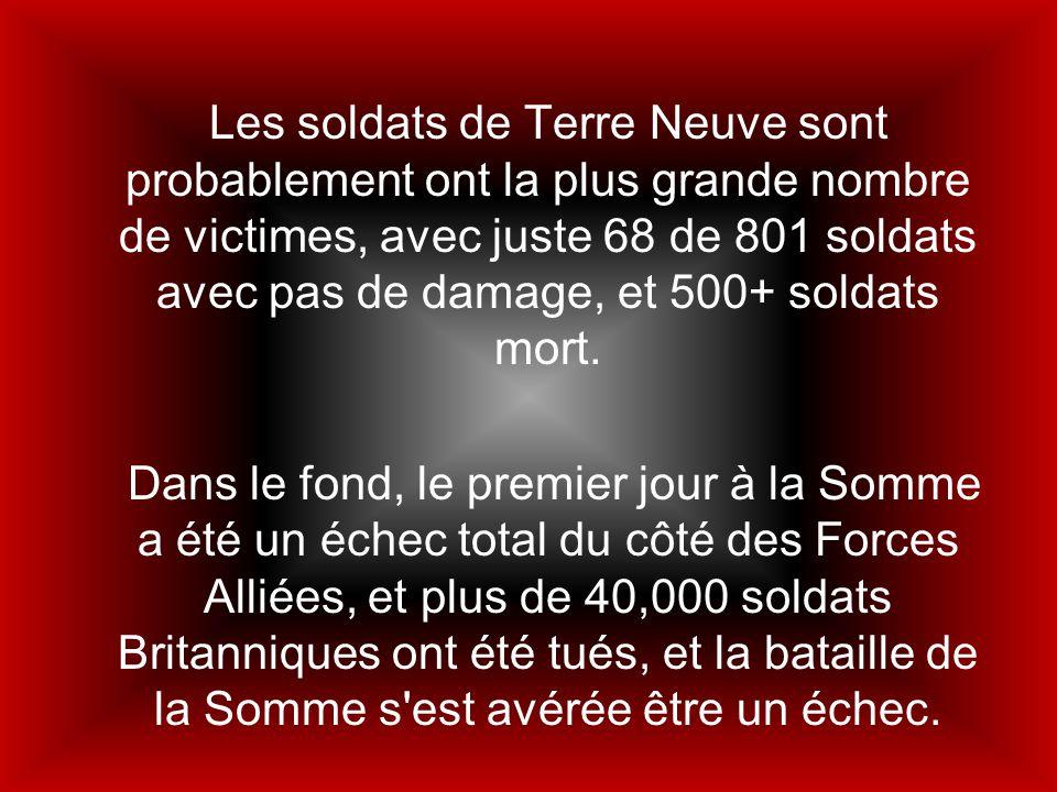 Les soldats de Terre Neuve sont probablement ont la plus grande nombre de victimes, avec juste 68 de 801 soldats avec pas de damage, et 500+ soldats mort.
