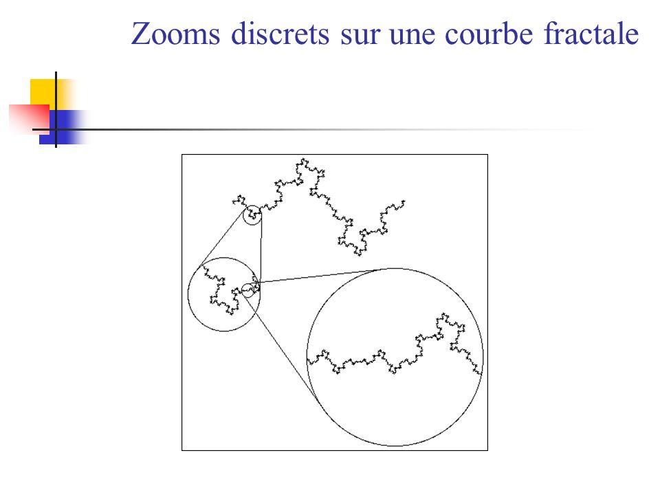 Zooms discrets sur une courbe fractale