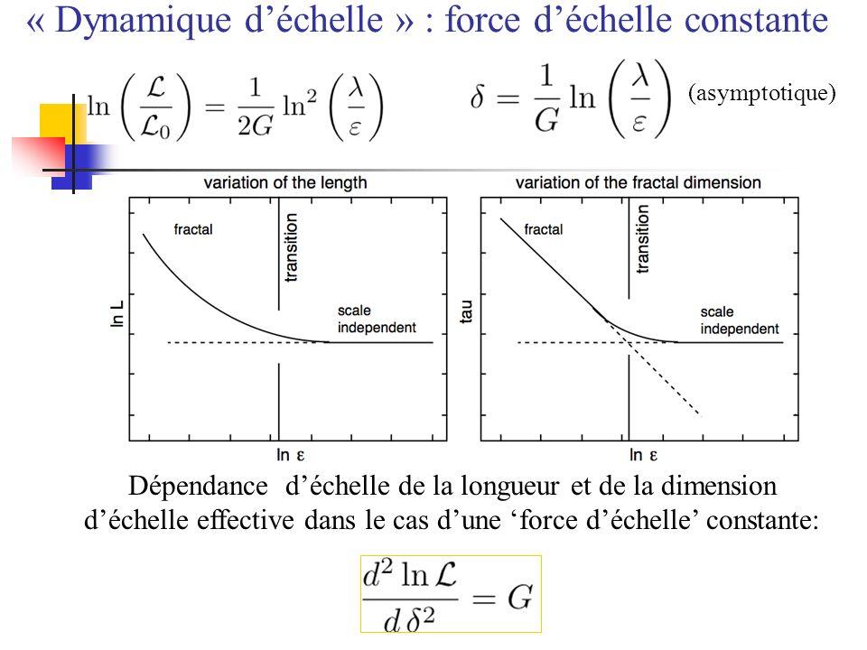 « Dynamique d'échelle » : force d'échelle constante