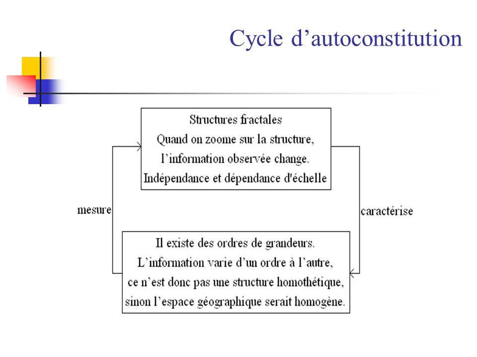 Cycle d'autoconstitution