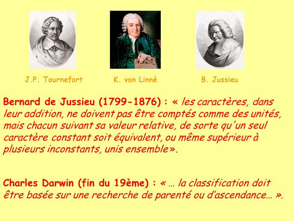 J.P. Tournefort K. von Linné B. Jussieu