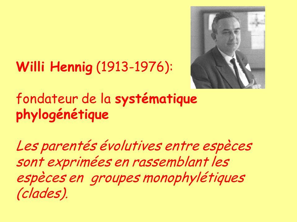 Willi Hennig (1913-1976): fondateur de la systématique phylogénétique.