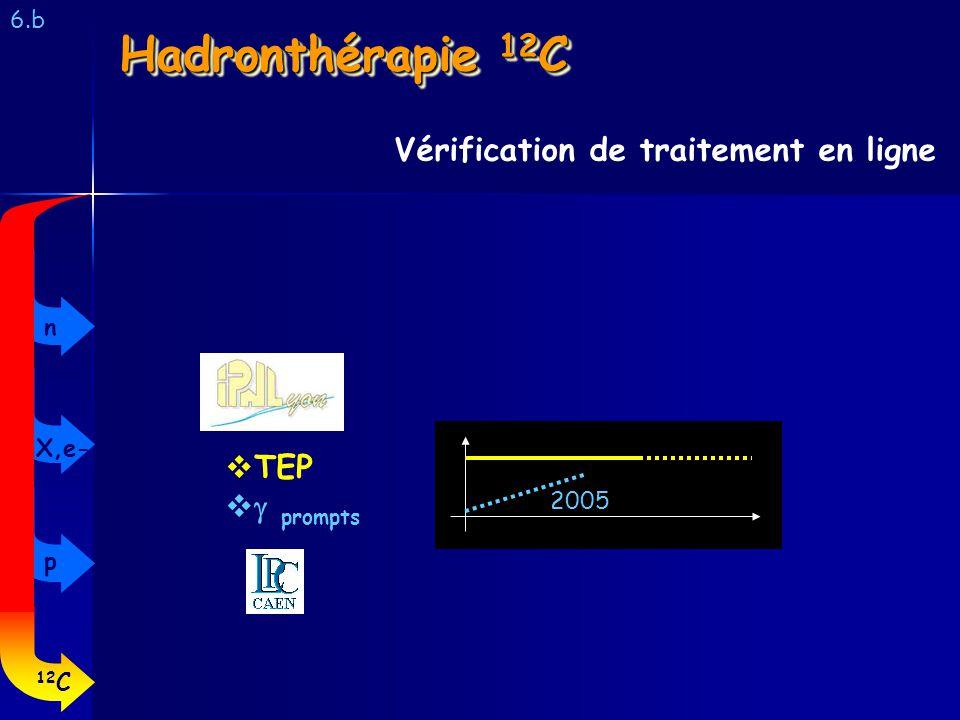 Hadronthérapie 12C Vérification de traitement en ligne TEP g prompts