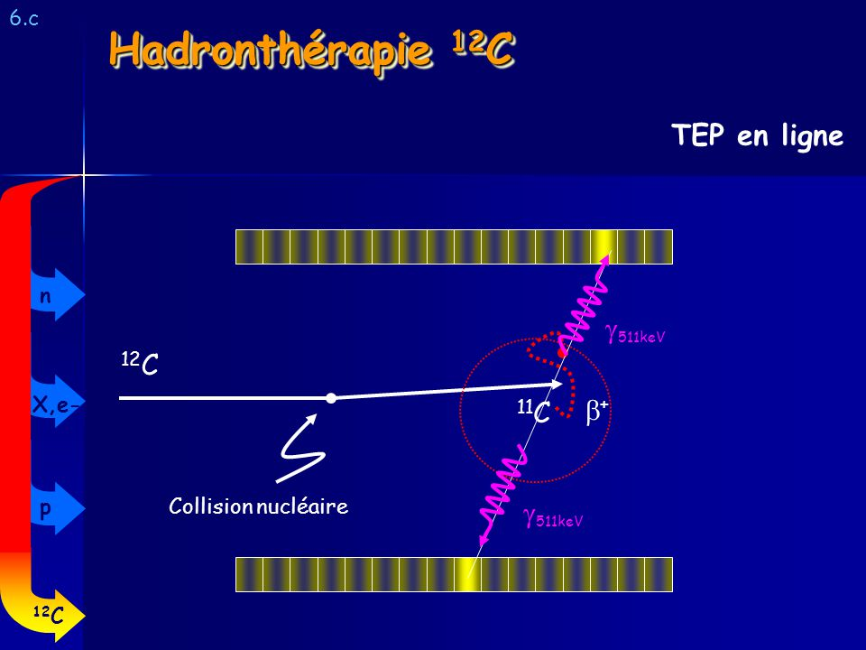 Hadronthérapie 12C TEP en ligne g511keV 12C b+ 11C g511keV 6.c n X,e-