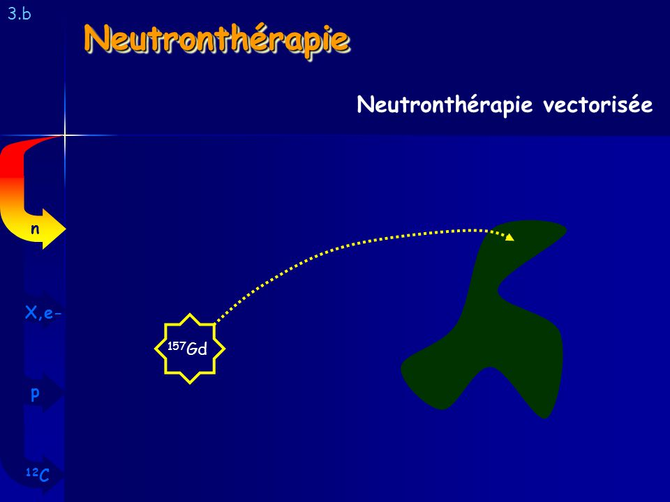 3.b Neutronthérapie Neutronthérapie vectorisée n X,e- 157Gd p 12C