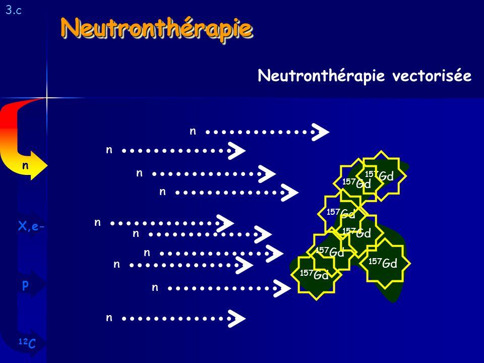 Neutronthérapie Neutronthérapie vectorisée 3.c n n n n 157Gd 157Gd n