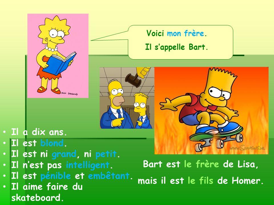 Bart est le frère de Lisa, mais il est le fils de Homer.