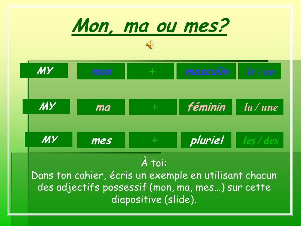 Mon, ma ou mes mon + masculin le / un ma + féminin la / une mes +