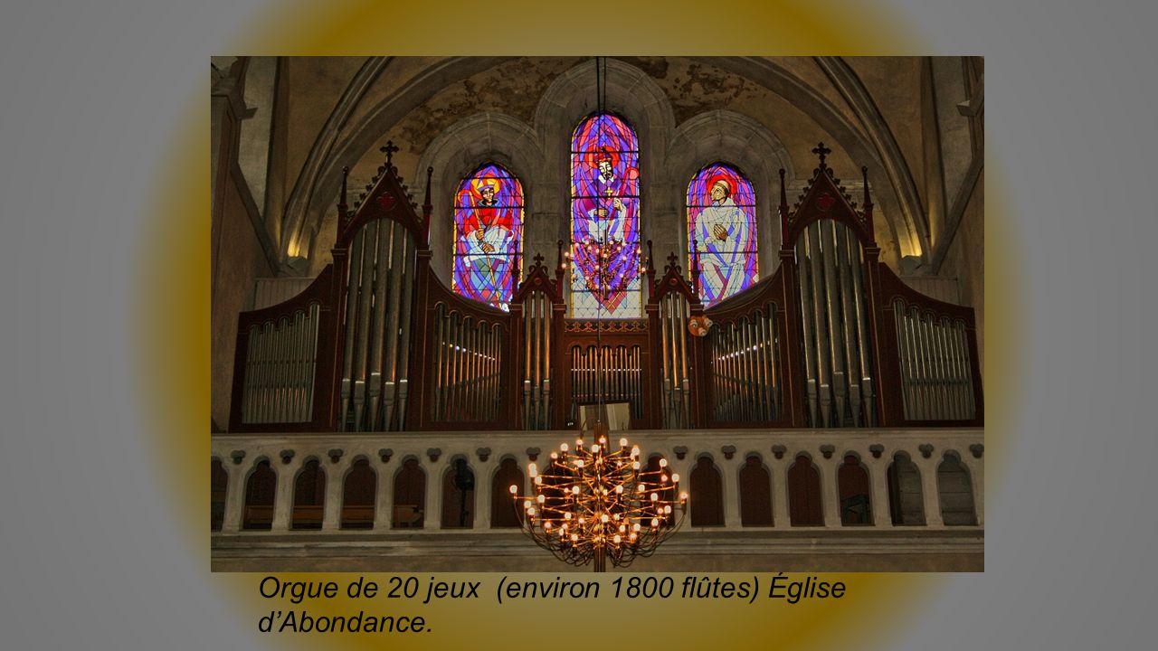 Orgue de 20 jeux (environ 1800 flûtes) Église d'Abondance.