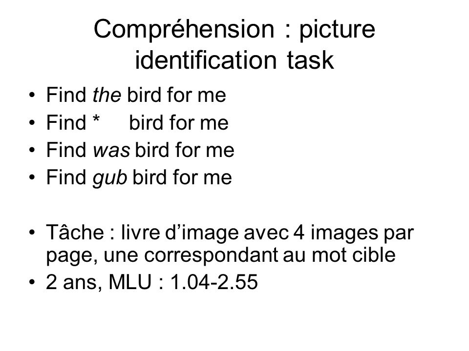 Compréhension : picture identification task