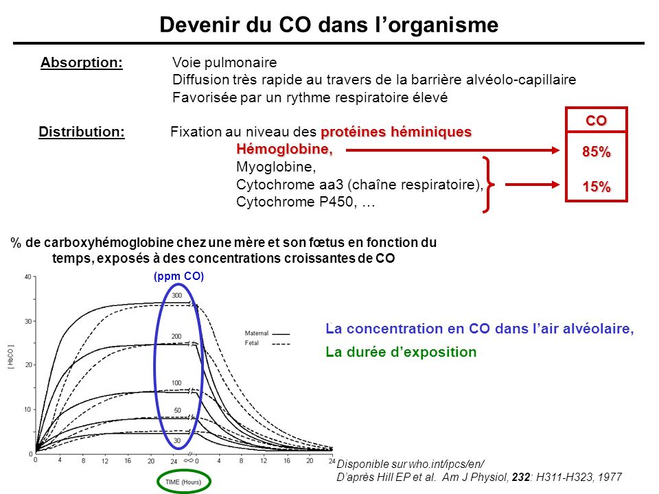Devenir du CO dans l'organisme
