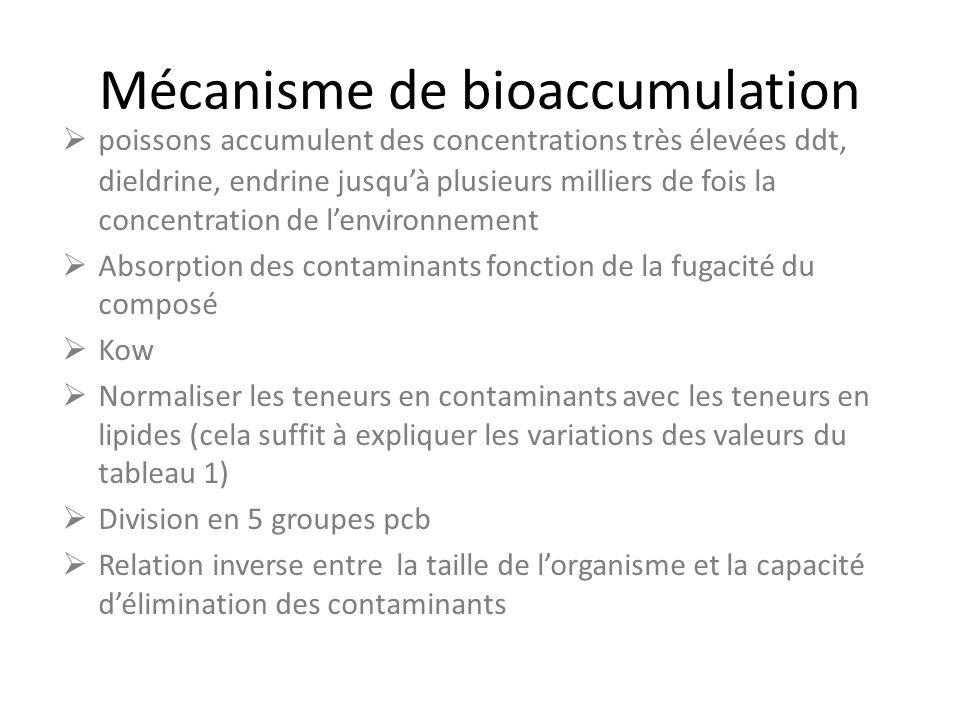 Mécanisme de bioaccumulation