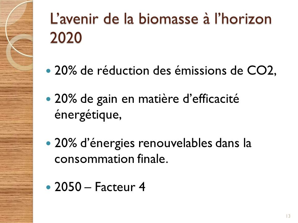 L'avenir de la biomasse à l'horizon 2020