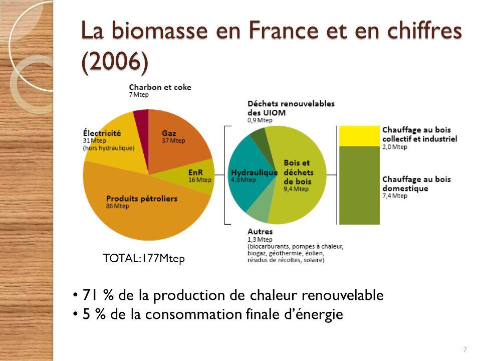 La biomasse en France et en chiffres (2006)