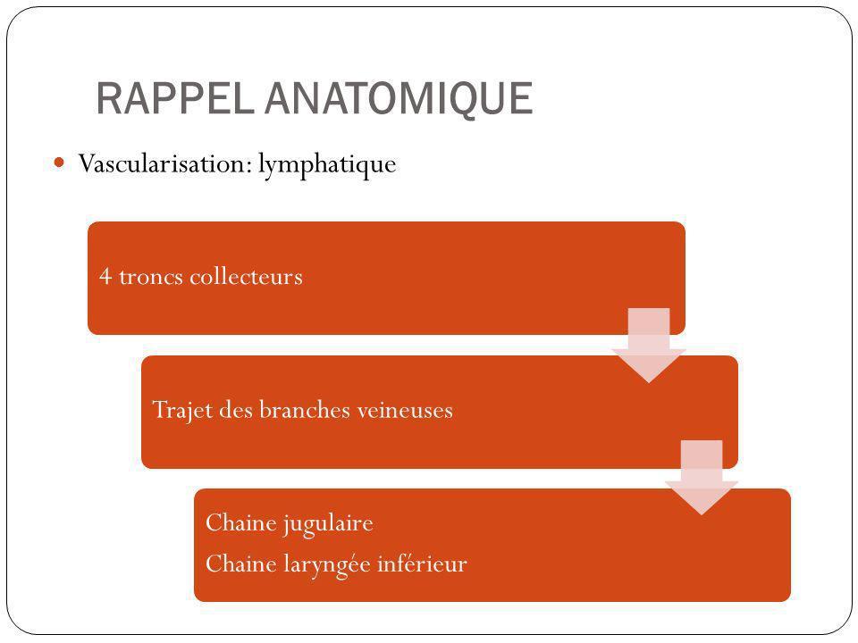 RAPPEL ANATOMIQUE Vascularisation: lymphatique Chaine jugulaire