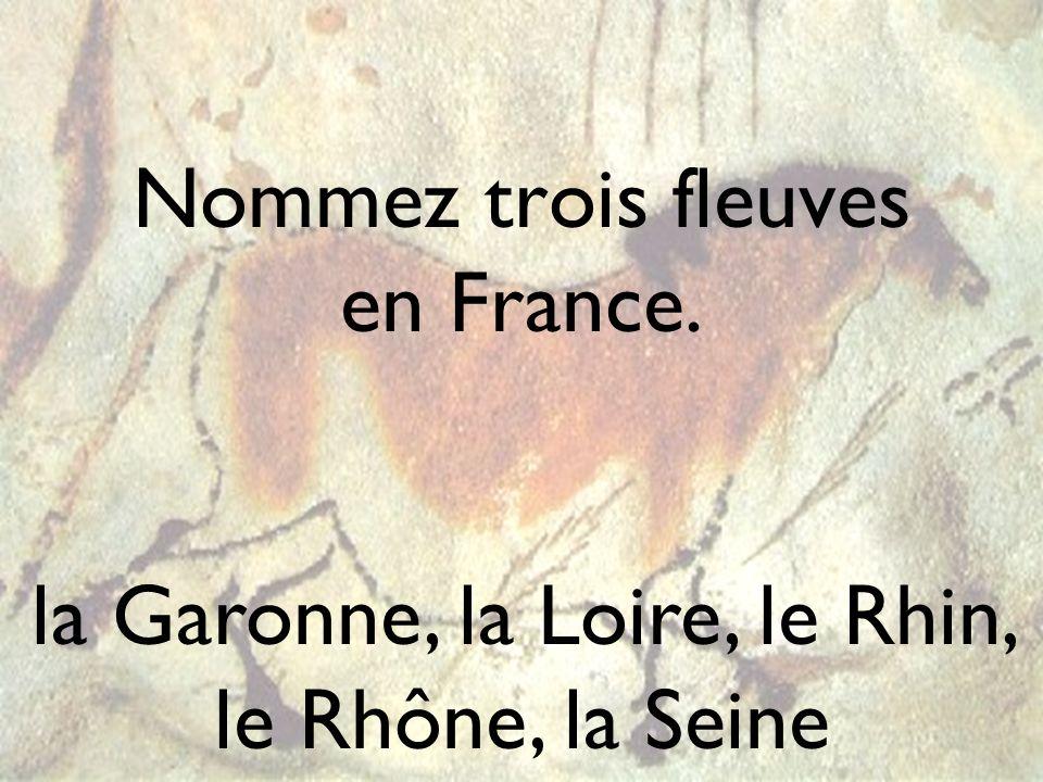 Nommez trois fleuves en France.