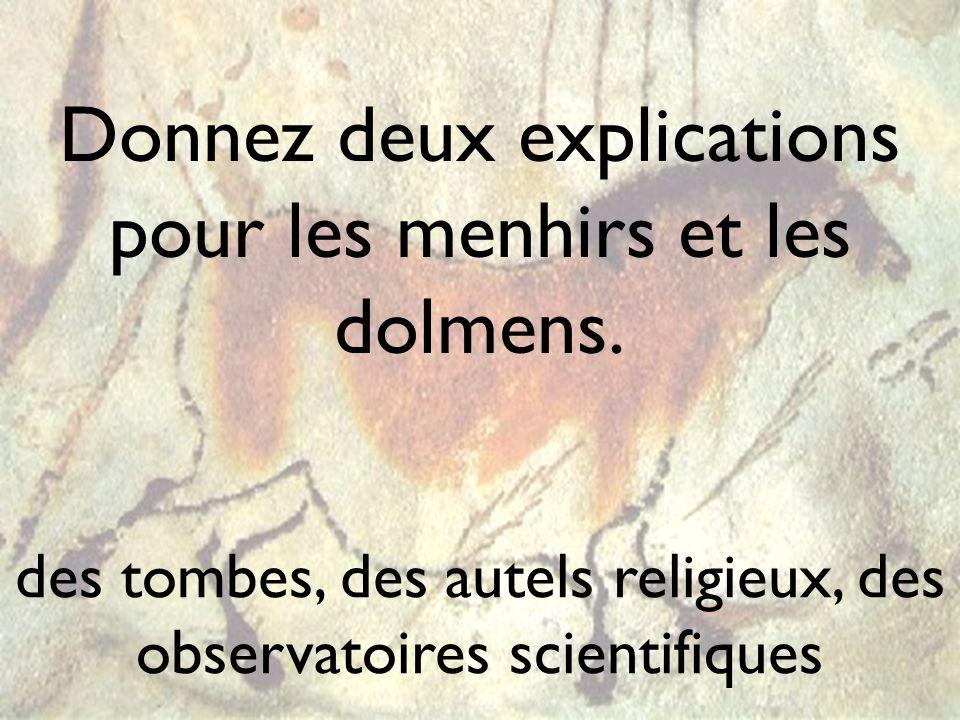 Donnez deux explications pour les menhirs et les dolmens.