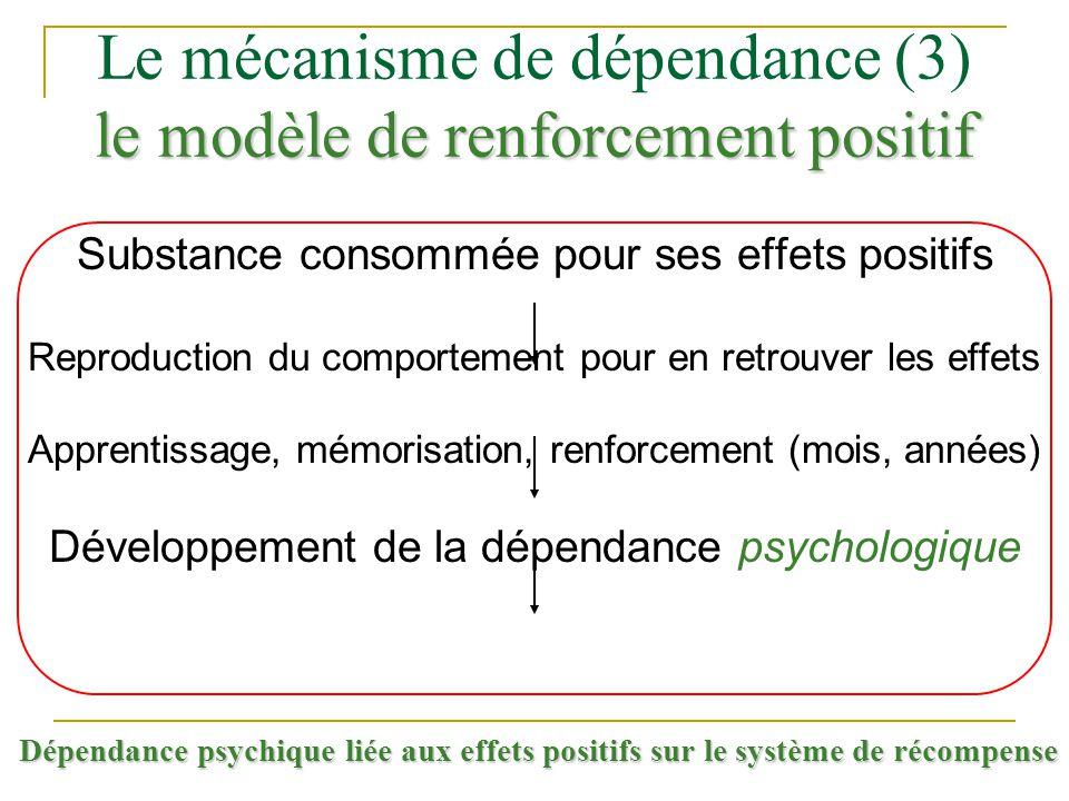 Le mécanisme de dépendance (3) le modèle de renforcement positif