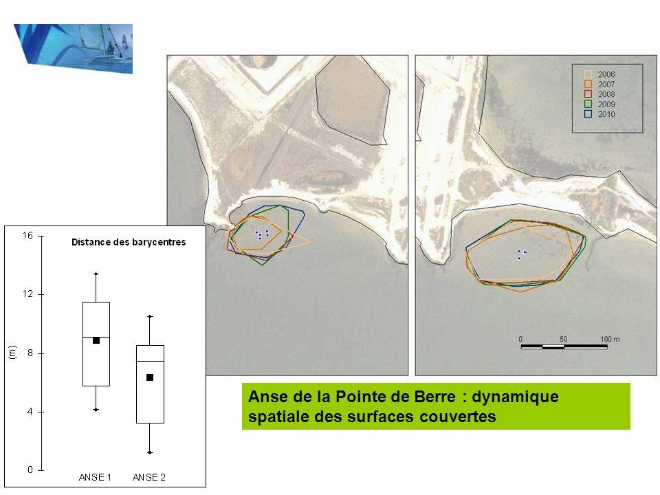Anse de la Pointe de Berre : dynamique spatiale des surfaces couvertes
