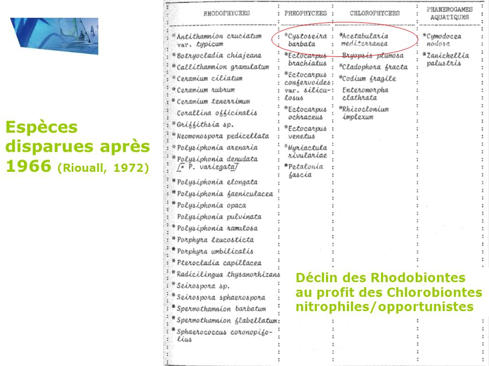 Espèces disparues après 1966 (Riouall, 1972)