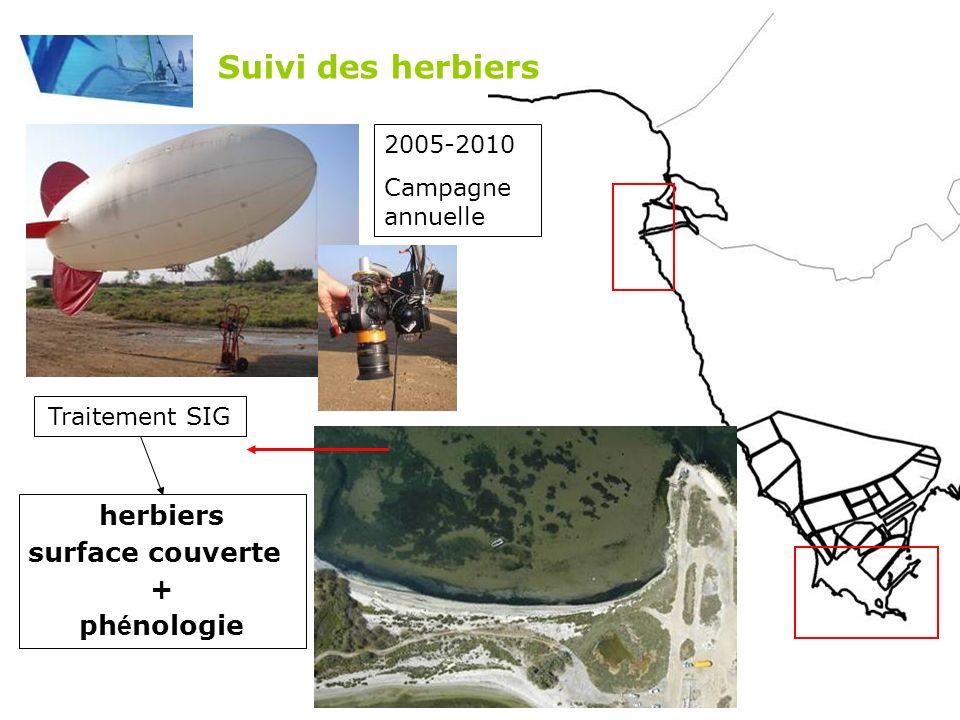 Suivi des herbiers herbiers surface couverte + phénologie 2005-2010