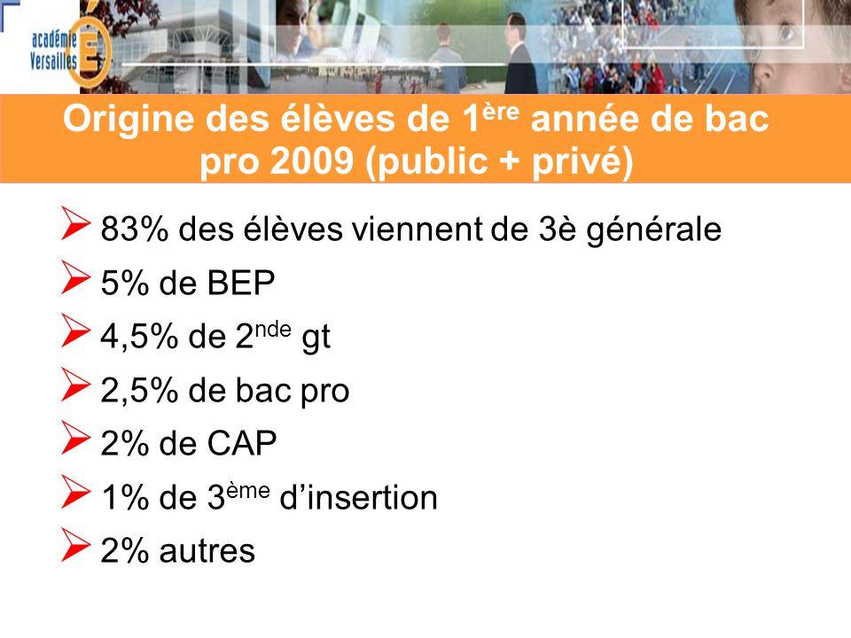 Origine des élèves de 1ère année de bac pro 2009 (public + privé)