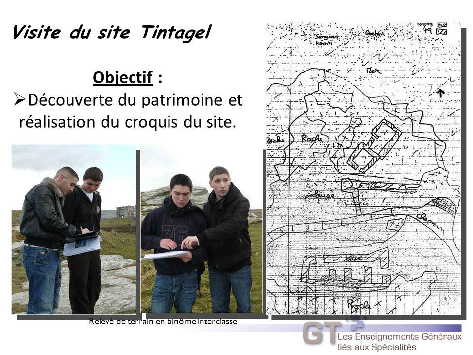 Visite du site Tintagel