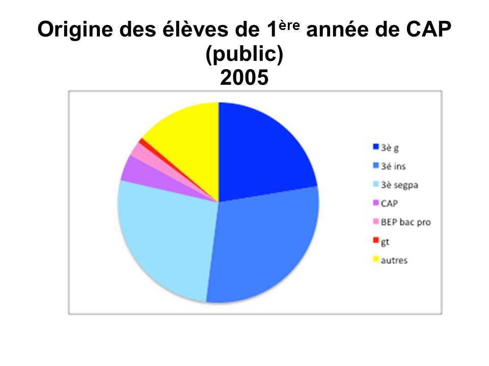 Origine des élèves de 1ère année de CAP (public) 2005