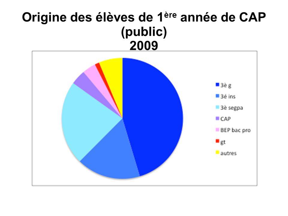 Origine des élèves de 1ère année de CAP (public) 2009