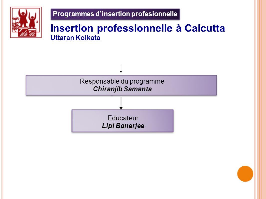 Programmes d'insertion profesionnelle insertion professionnelle