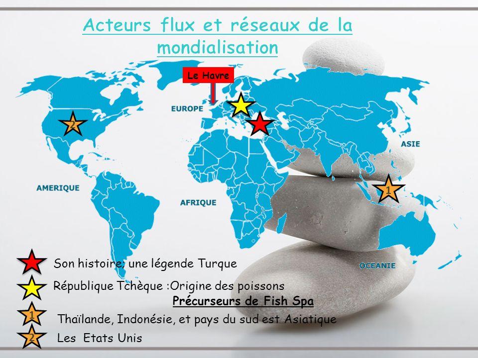 Acteurs flux et réseaux de la mondialisation