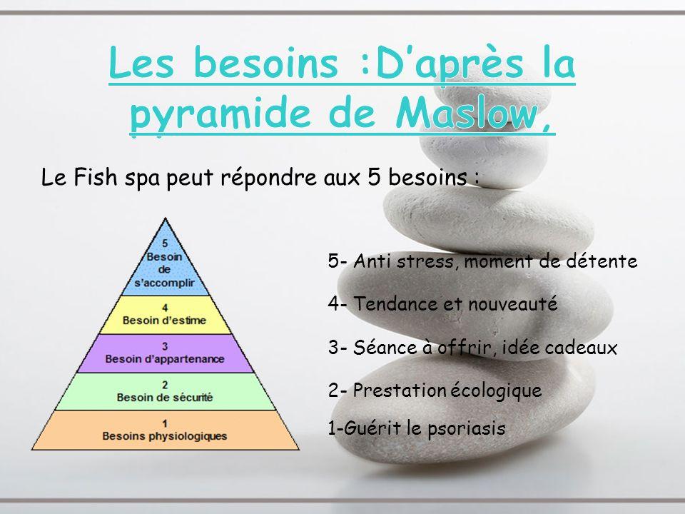 Les besoins :D'après la pyramide de Maslow,