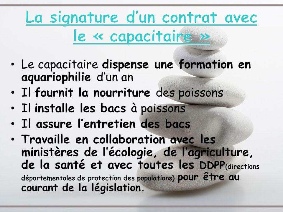 La signature d'un contrat avec le « capacitaire »