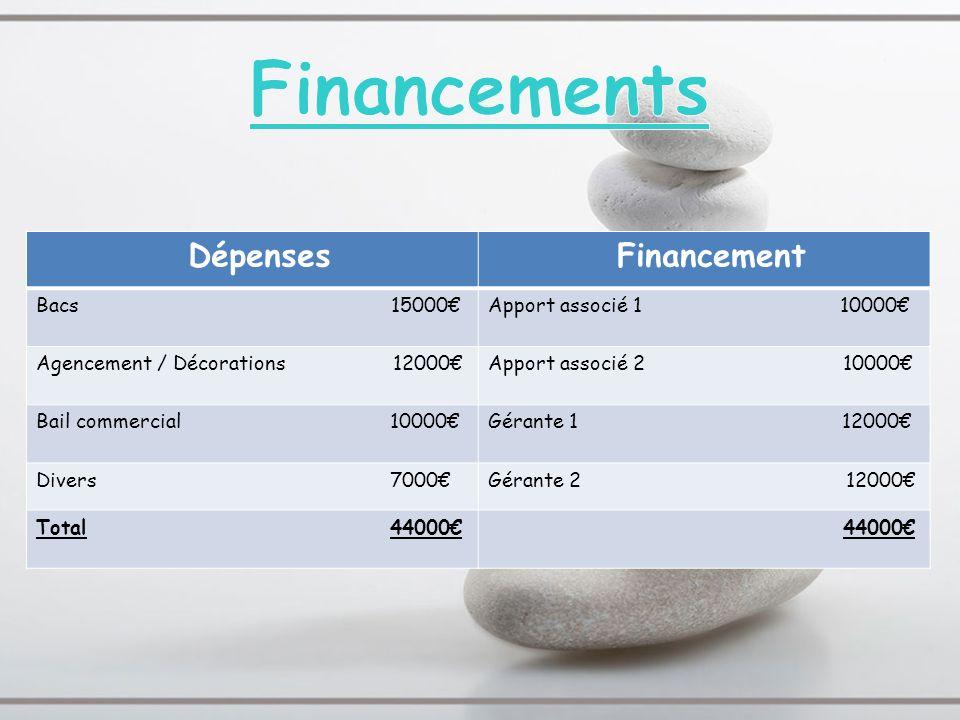 Financements Dépenses Financement Bacs 15000€ Apport associé 1 10000€