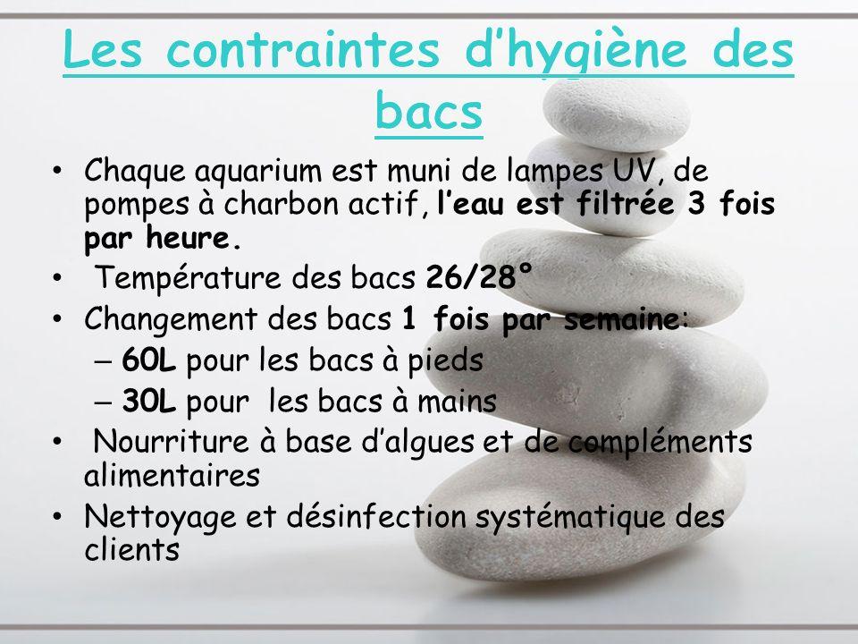 Les contraintes d'hygiène des bacs