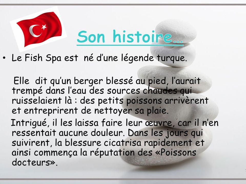 Son histoire… Le Fish Spa est né d'une légende turque.