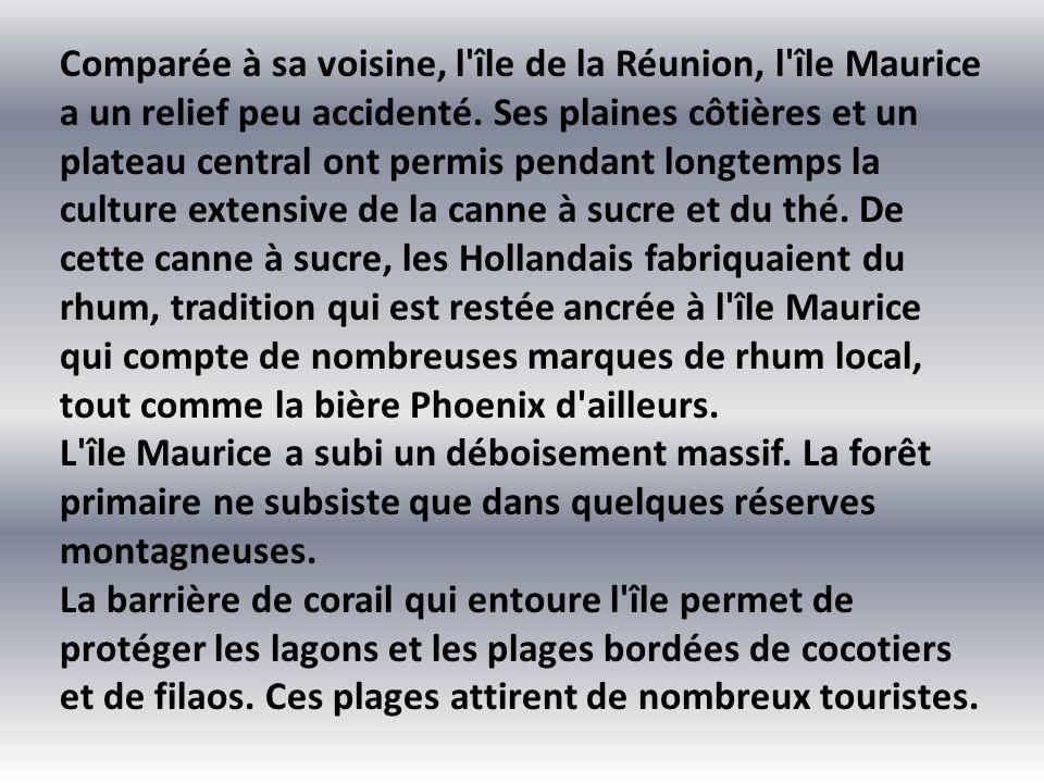 Comparée à sa voisine, l île de la Réunion, l île Maurice a un relief peu accidenté. Ses plaines côtières et un plateau central ont permis pendant longtemps la culture extensive de la canne à sucre et du thé. De cette canne à sucre, les Hollandais fabriquaient du rhum, tradition qui est restée ancrée à l île Maurice qui compte de nombreuses marques de rhum local, tout comme la bière Phoenix d ailleurs.