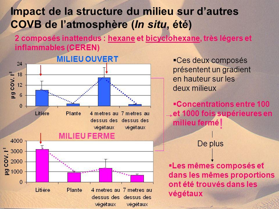 Impact de la structure du milieu sur d'autres COVB de l'atmosphère (In situ, été)