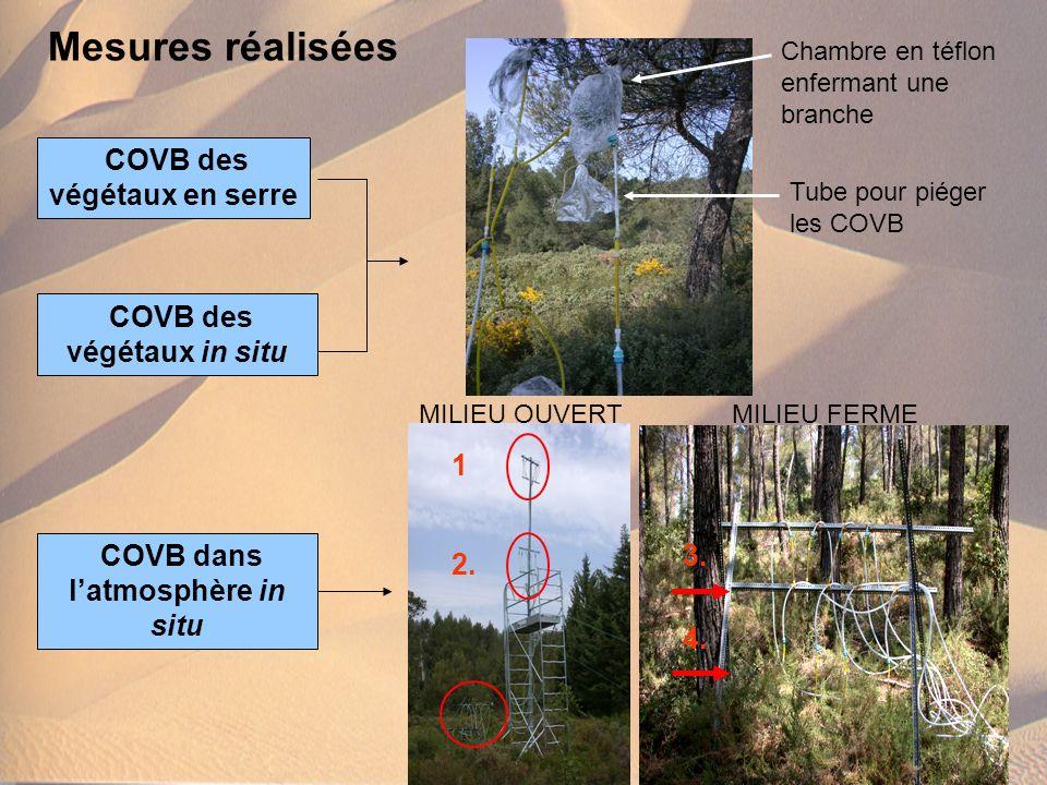 Mesures réalisées COVB des végétaux en serre COVB des végétaux in situ