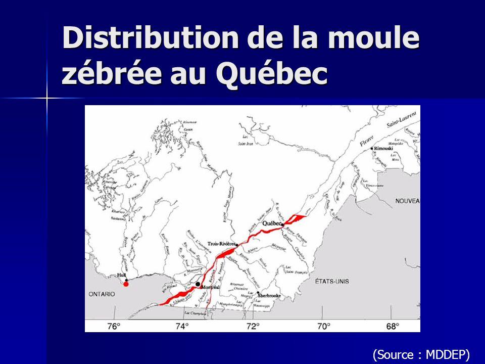 Distribution de la moule zébrée au Québec