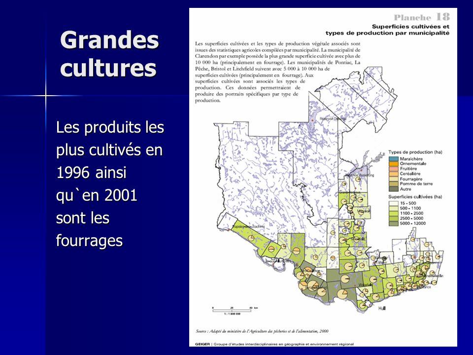 Grandes cultures Les produits les plus cultivés en 1996 ainsi