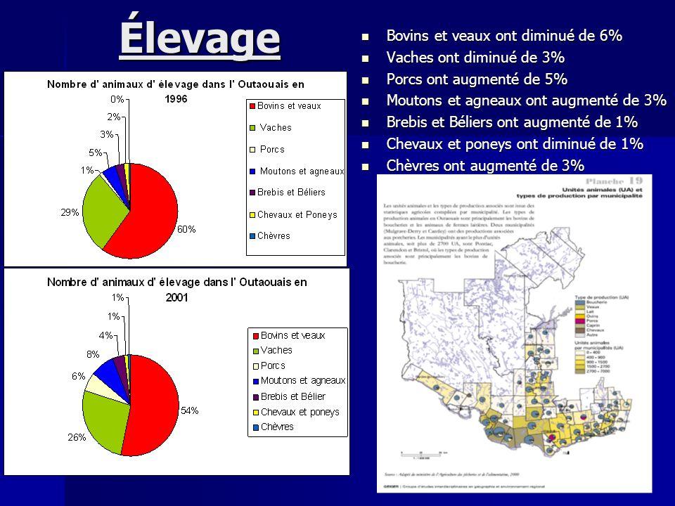 Élevage Bovins et veaux ont diminué de 6% Vaches ont diminué de 3%
