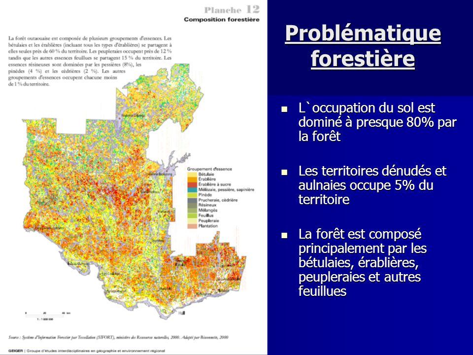 Problématique forestière
