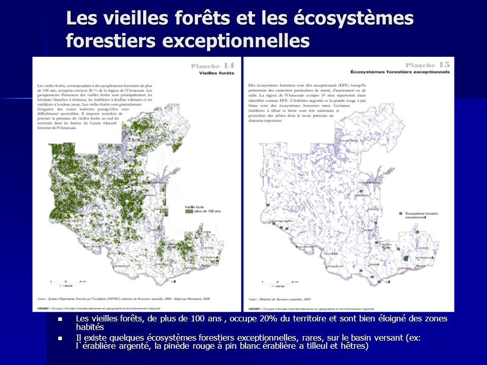 Les vieilles forêts et les écosystèmes forestiers exceptionnelles