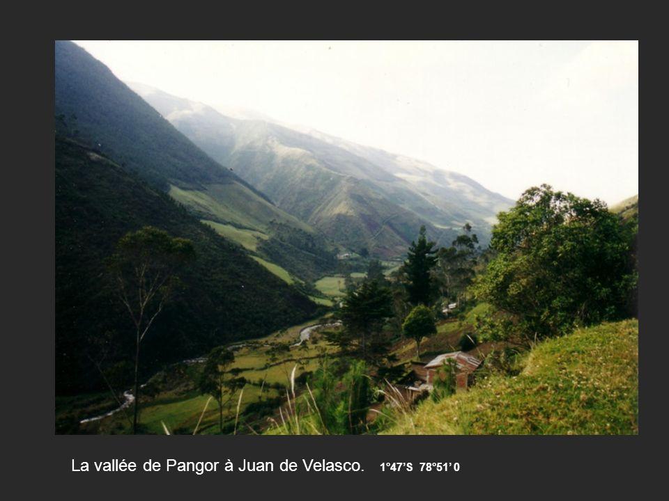 La vallée de Pangor à Juan de Velasco. 1°47'S 78°51' 0