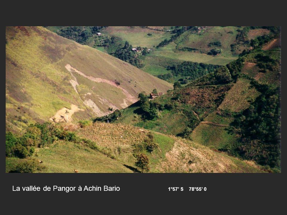 La vallée de Pangor à Achin Bario 1°57' S 78°55' 0