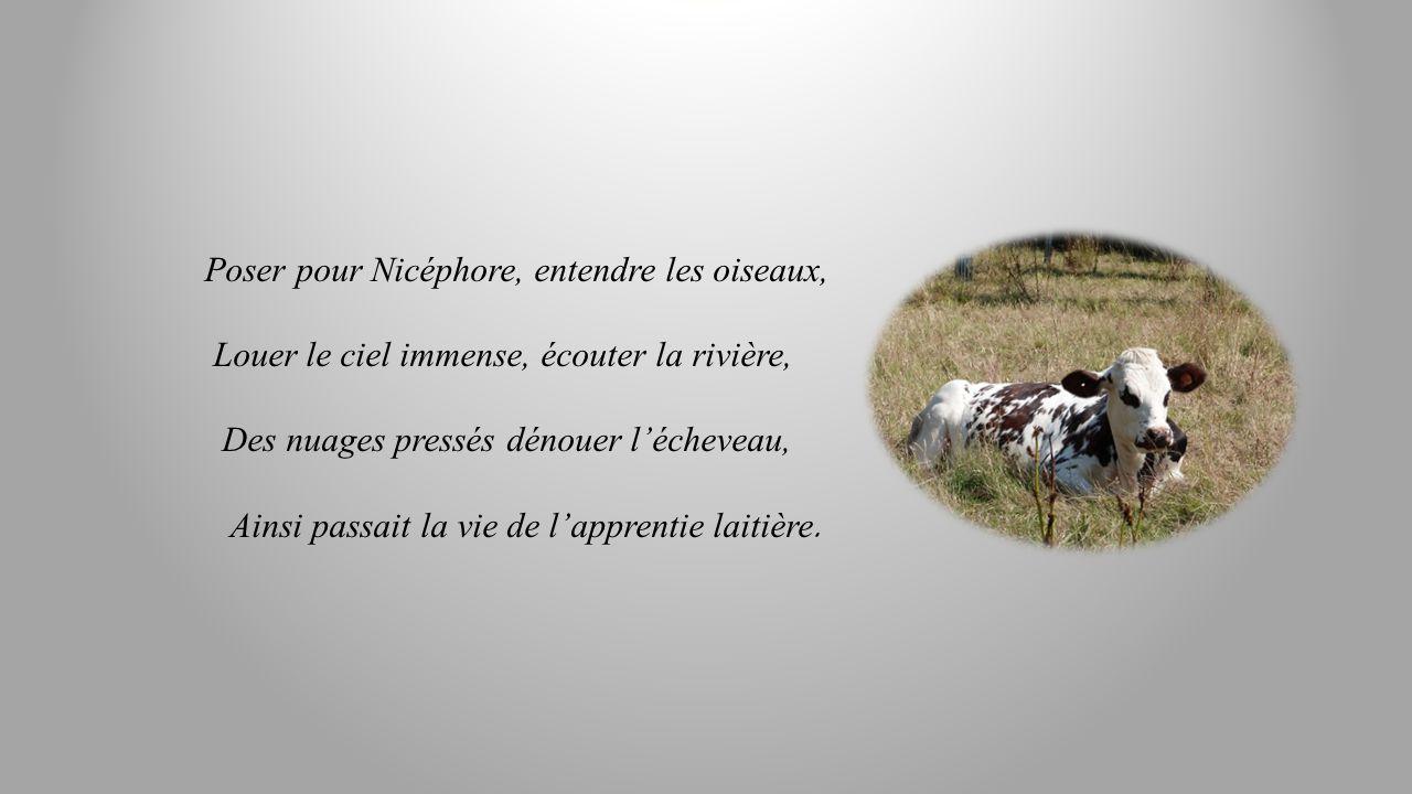 Poser pour Nicéphore, entendre les oiseaux,